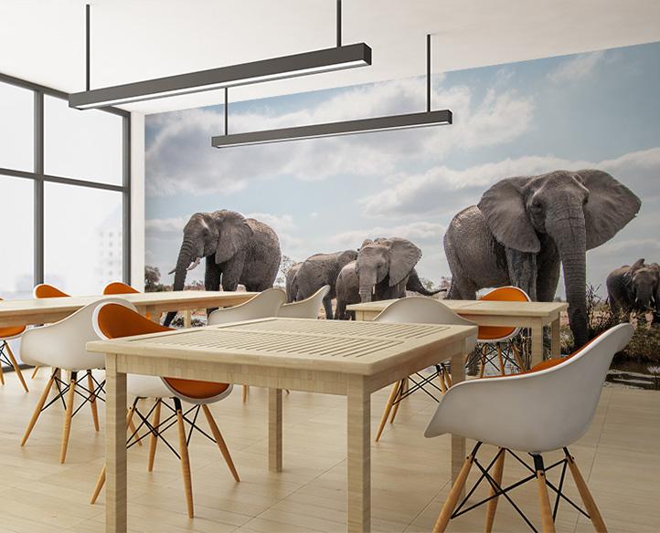 Wall Mural Printed on Photo Tex™ Adhesive Wallpaper