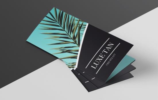DL Brochures