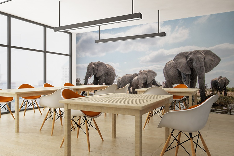 New Photo Tex™ wall mural material can be self installed, removed and re-used!